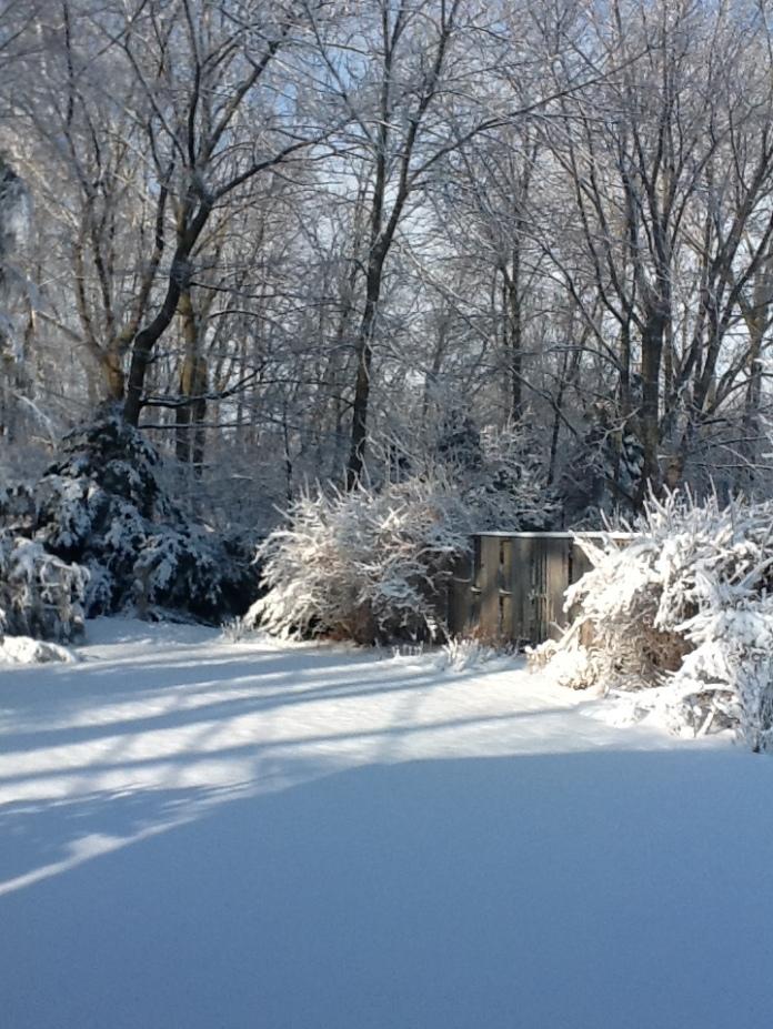 Winter 032